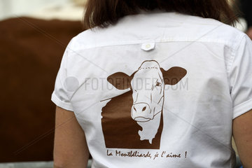 Cow Montbeliarde  competition  participant with a blouse La Montbeliarde  I love it  comice agricultural  Super Comice in October 2015  Pontarlier  Doubs (25)  France
