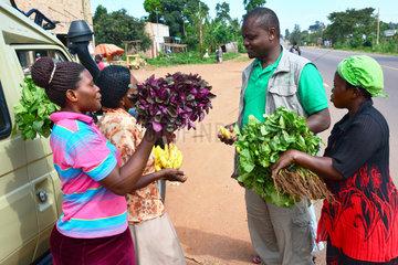 Sale of fruits and vegetables at a roadside - Uganda