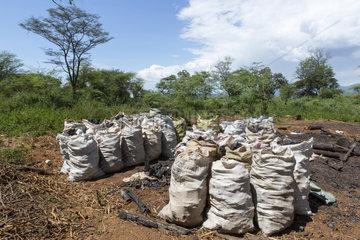Charcoal Bags - Lake Bogoria Kenya