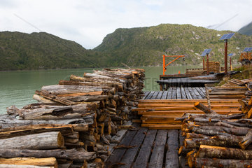 Cypress wood - Caleta Tortel Port Patagonia Chile