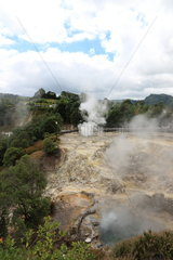 Discharges of water and hot mud and fumaroles  Volcanic phenomena. Island of Pico. Azores. Portugal