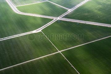 Aerial photography of rice paddies  Sevilla  Spain