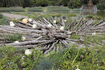 Squash and logs at the Parc Floral de Paris 12th  France