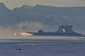 Inuit hunters coming back from bear hunt  february  Igterajivit distrcit  East Greenland
