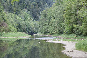 Fly fishing on the Doubs river  Doubs  Franche-Comte  France