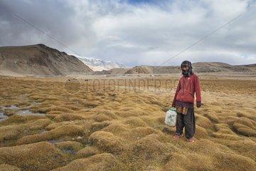 Young woman looking for water at the creek  Surroundings of Korzok  Leh  Ladakh  Himalayas  India