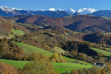 Wooded countryside of the Basque Country in autumn: province of Soule  Pyrenees  France