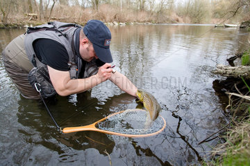 Taking picture of a brown trout - Moselle France