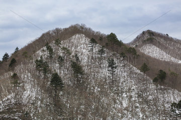 Mount Tanigawa under snow  Gunma  Japan