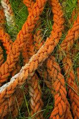 Fising nets - Eraksay island Outer Hebrides Scotland