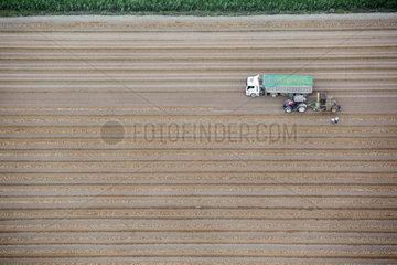 Aerial photography  Crop field  Sevilla  Spain