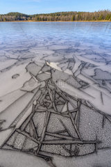Ice marquetry in early winter  Lake Bellefontaine  Jura  France