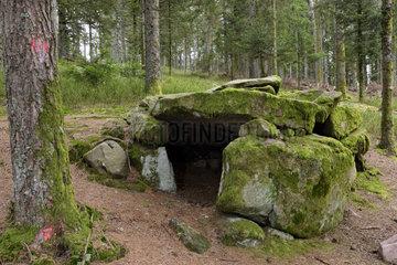 Dolmen Purifaing - Fossard Massif Vosges France