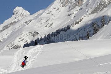 Snowshoeing - Aravis Alps France
