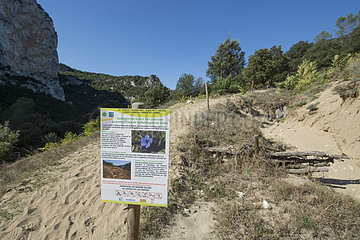 Action for the preservation of lawns on the mountain of sand. Nature reserve of the Gorges de l'Ardeche  France