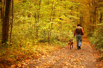 Rambler and his dog in a wood in autumn  October  Picardy  France.