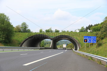 Passage to wildlife over a motorway  France