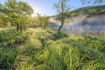 Misty atmosphere on a mountain lake  Lake Viremont  Jura  France