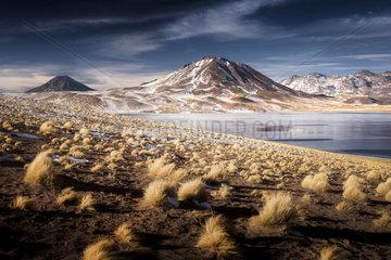 Laguna Miscanti  Las Campanas  Atacama Desert  Chile