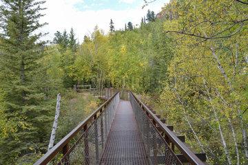 Bridge at the Spearfish Falls  South Dakota  Blackhills  USA