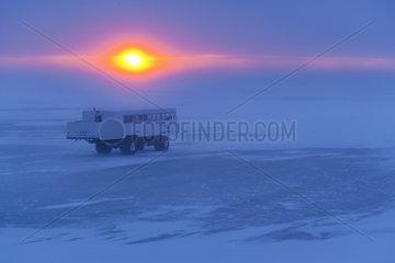 Polar bear viewing  Churchill  Hudson Bay  Manitoba  Canada  America