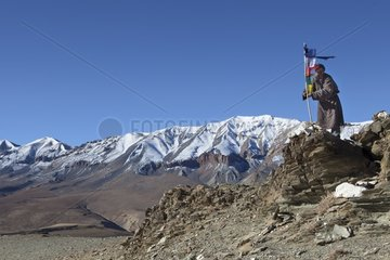 Man and prayer flag  Changthang Plateau  Ladakh  Himalayas  India