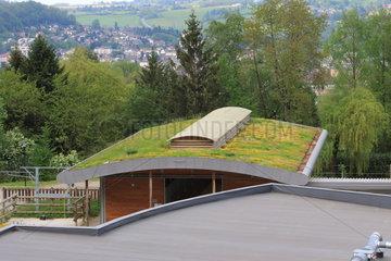 Vegetalized roof  France