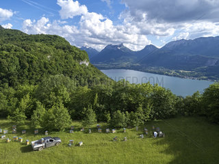 Beekeeping - Aerial view in summer of an apiary near the Forclaz Pass near Annecy  France.