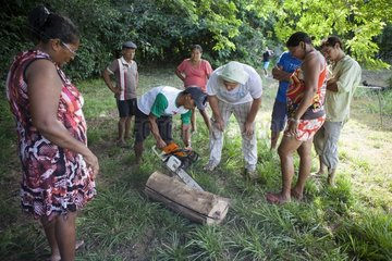 Cutting a trunk with a chainsaw to seed hives. Training organized by the Chico Mendes Scientific Institute for Ribeirinhos populations living along the Araguari River in the Amazon with the objective of producing honey initially for personal consumption and eventually for sale; Trainer Douglas Schwank.
