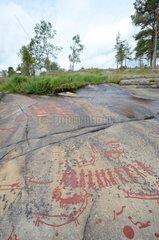 Rock Carvings in Tanum - Tanumshelde Sweden
