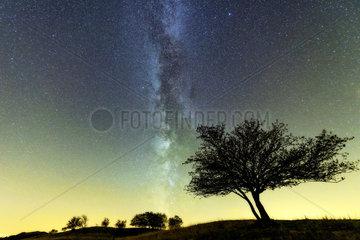 Milky Way over the Jura ridges  Grand du Colombier  Ain  France