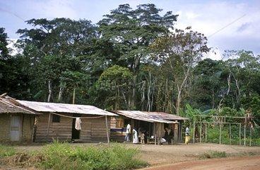Baka pygmies village Gabon