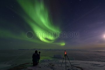 Shooting aurora borealis  Greenland  February 2016