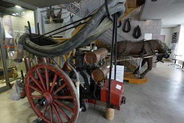 1890 motor pump pulled by a horse  Relais Museum of horse Comte and forest  Levier   Haut-Doubs  Franche-Comté  France