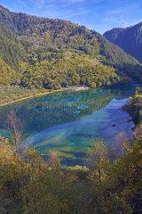 Five flower Lake  Jiuzhaigou valley  Sichuan  China