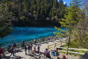 Five colors lake  Jiuzhaigou valley  Sichuan  China