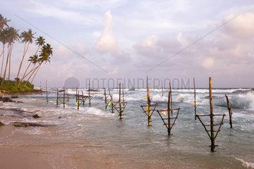 Stilt fish near the beach  traditional fishing  Weligama  Indian Ocean  Sri Lanka