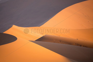 Lights and curves on the giant dunes of the Namib Desert  Namibia