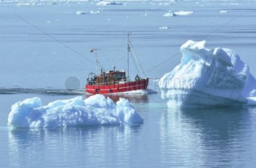 Denmark. Greenland. West coast. Fishing boat near the town of Ilulissat. The main species are the cod  the halibut and the snapper.