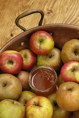 Apples and apple jelly jar in a preserving pan   apple (Malus communis)   France