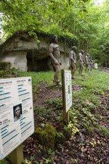 Man evolution   Prehistoric Park  Dino Zoo   Charbonnières -les-Sapins   Franche -Comté   France