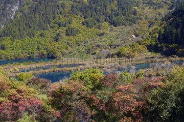 Waterfall Shuzheng Falls  Jiuzhaigou valley  Sichuan  China