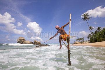 Stilt fisherman near the beach  traditional fishing  Weligama  Indian Ocean  Sri Lanka
