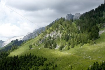 Confins valley in the Aravis  Alps  France