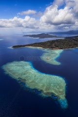 Coral reef in the lagoon  Mayotte  Indian Ocean