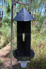 insect trap detection boring experimentally by INRA  Forest Lazaretto  Anglet (64).