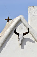 Bull skull on gardian Shack - Camargue France