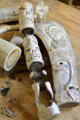 Denmark. Greenland. West coast. Head of some inuit gods made in reindeer horn by craftmen of Ilulissat.