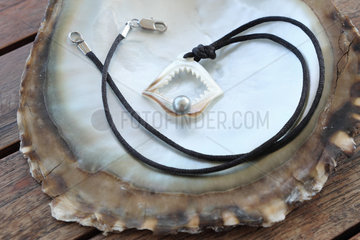 Tahitian black pearl necklace mounted in a shell