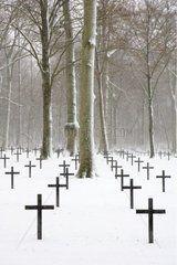 Military cemetery under snow Moselle France